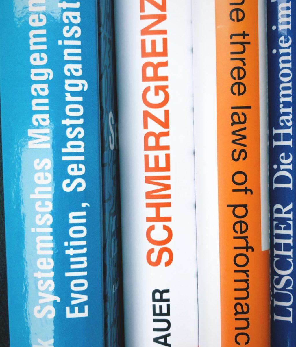 Bücher, Fachliteratur, Sachbücher – Schmerzgrenze