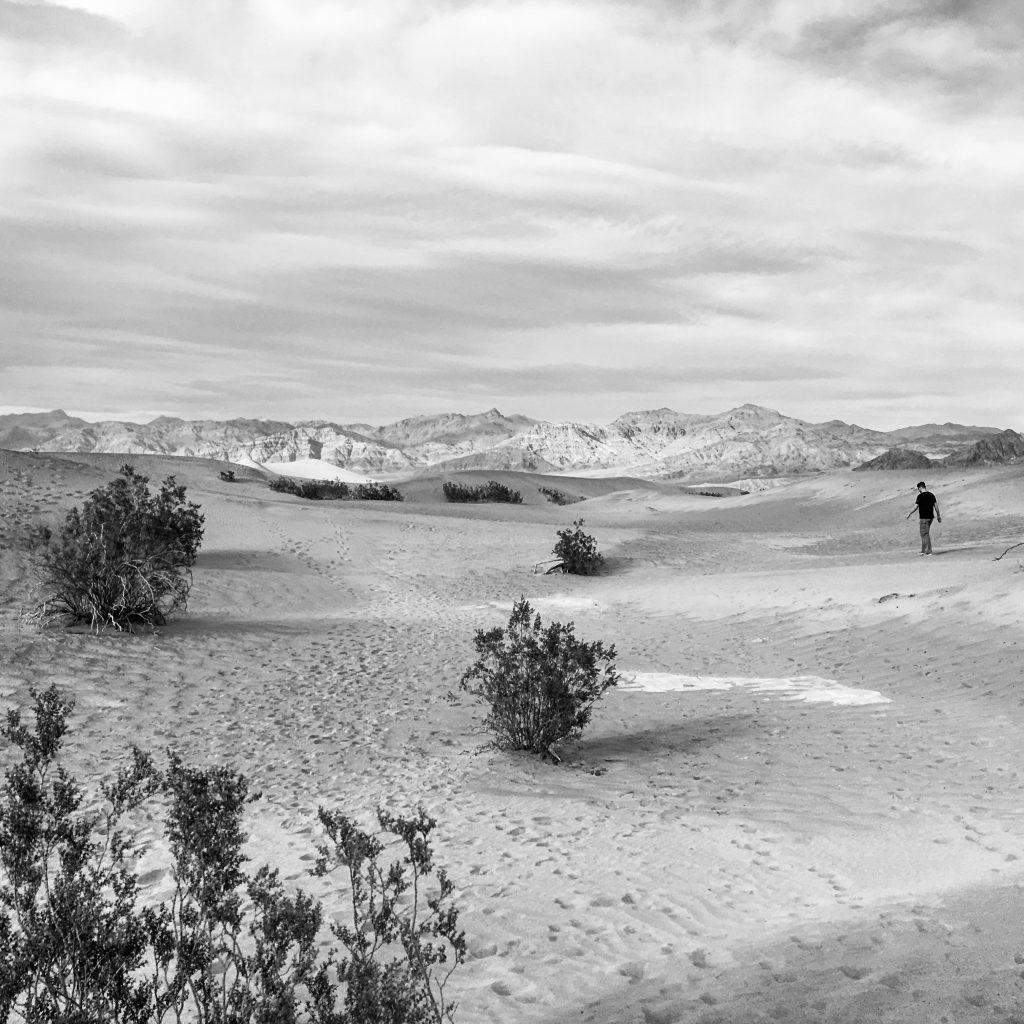 Death Valley: Tall friend (2017)