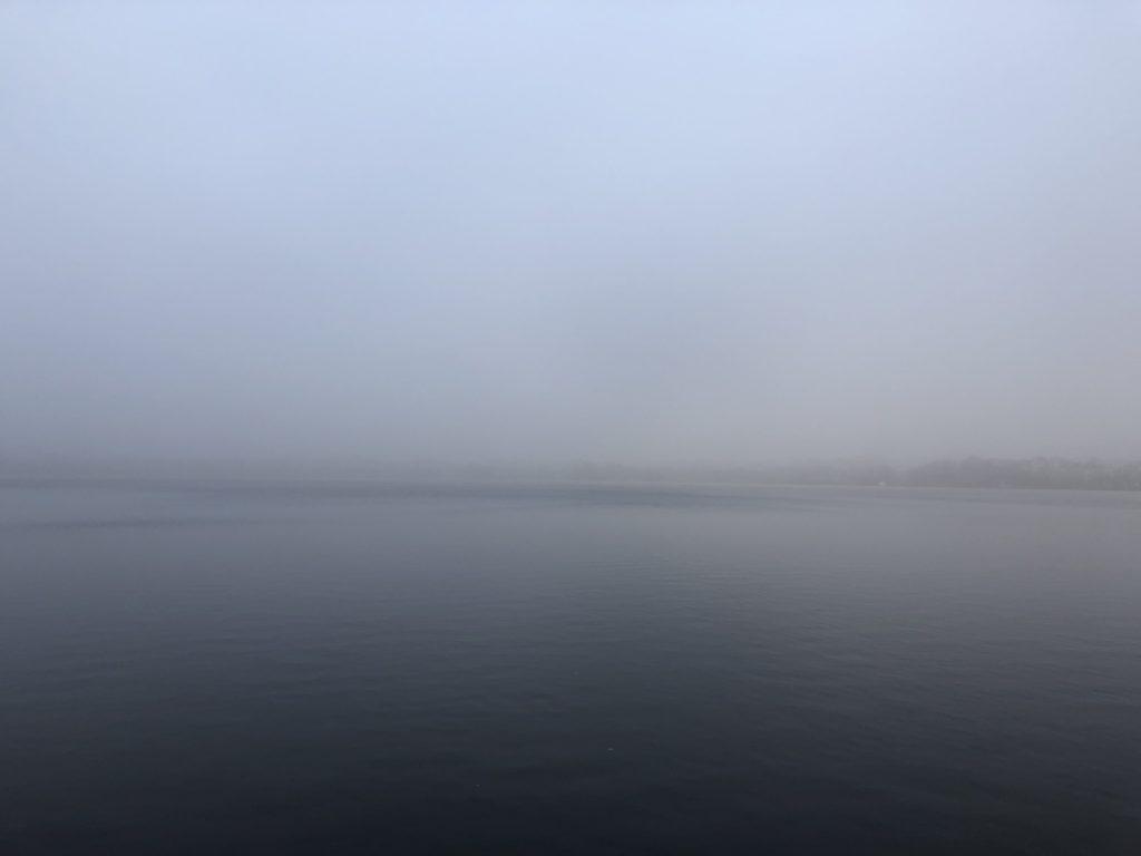 Januar-Nebel an der Alster, Hamburg (2020)
