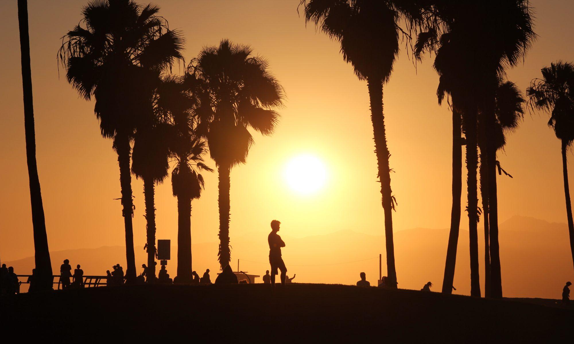 Sonnenuntergang mit Palmen und Menschen, Venice Beach (2015)